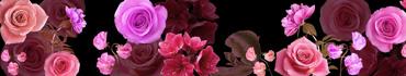 Скинали - Различные цветы на черном фоне