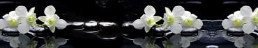 Скинали - Спа камни с белыми орхидеями