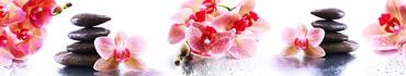 Скинали - Яркие цветочки с камушками на белом фоне