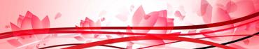 Скинали - Векторные лотосы на абстрактном фоне