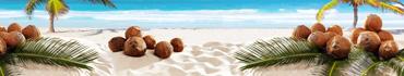 Скинали - Кокосы на пляже