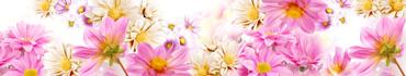 Скинали - Фон с различными цветами