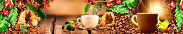 Скинали - Ароматный кофе, свежие и обжаренные зерна