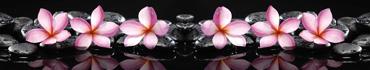 Скинали - Розовые цветы с отражением в воде