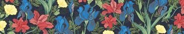 Скинали - Красочные ирисы на темном фоне