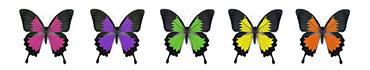 Скинали - Ассорти бабочек