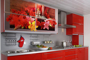 Кухня с фотопечатью - 10