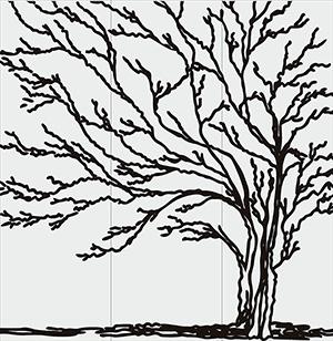Пескоструй- Природа - 5115