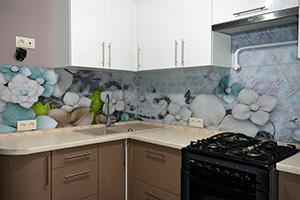 Скинали для кухни - 478