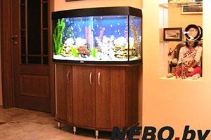 Тумба под аквариум - 7