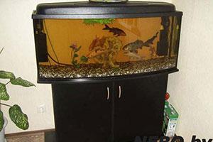 Тумба под аквариум - 9