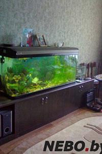 Тумба под аквариум - 13